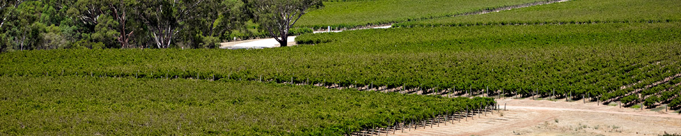Annual Reports Barossa Infrastructure